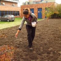 Výsev směsi na podzim (Biologické centrum)
