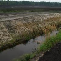 Těžené rašeliniště až na minerální podklad - silně odvodněné