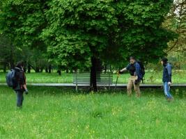 Údržba pásů v městském parku Stromovka.